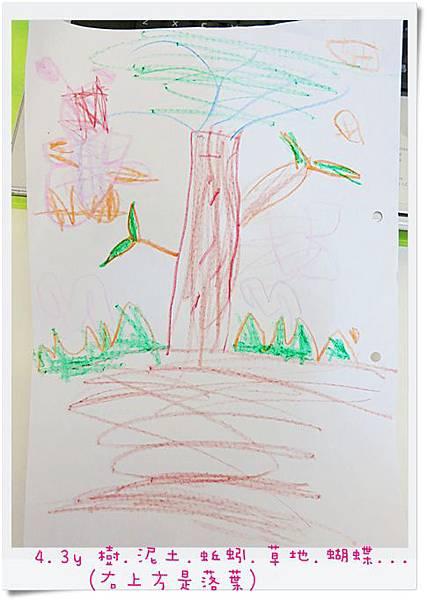 4.3y 樹.泥土.蚯蚓.草地.蝴蝶...(右上方是落葉)