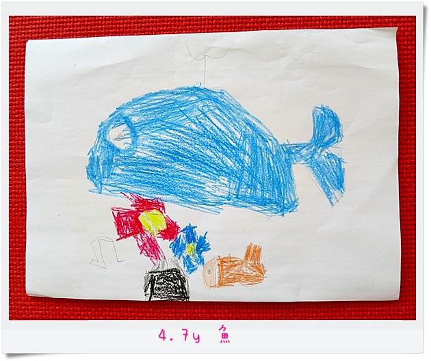 4.7y 魚