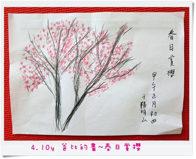 4.10y 爸比的畫~春日賞櫻