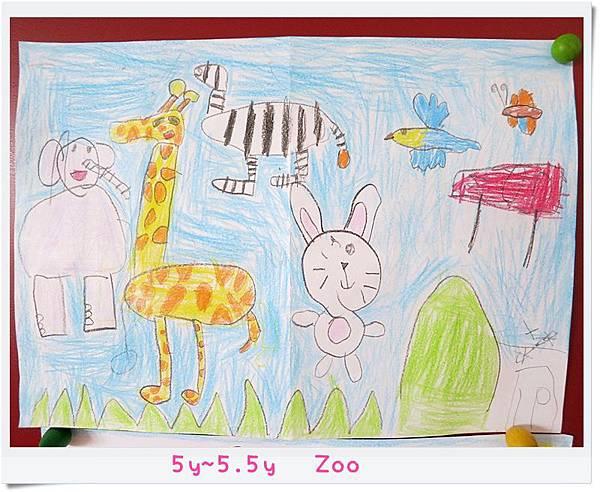 5y~5.5y Zoo