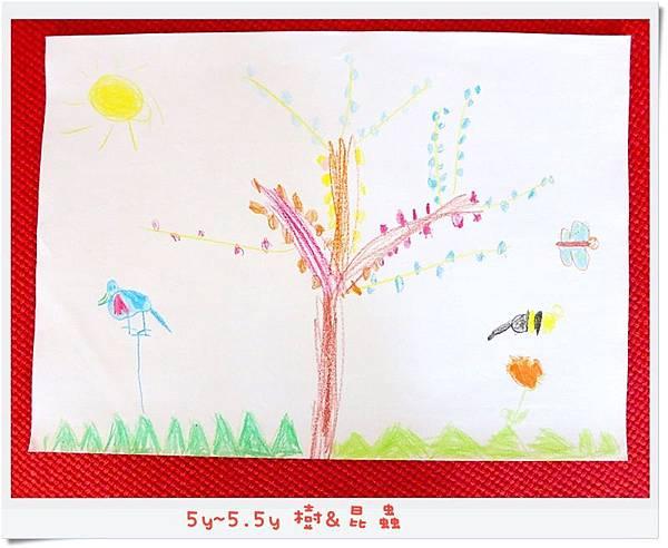 5y~5.5y 樹&昆蟲