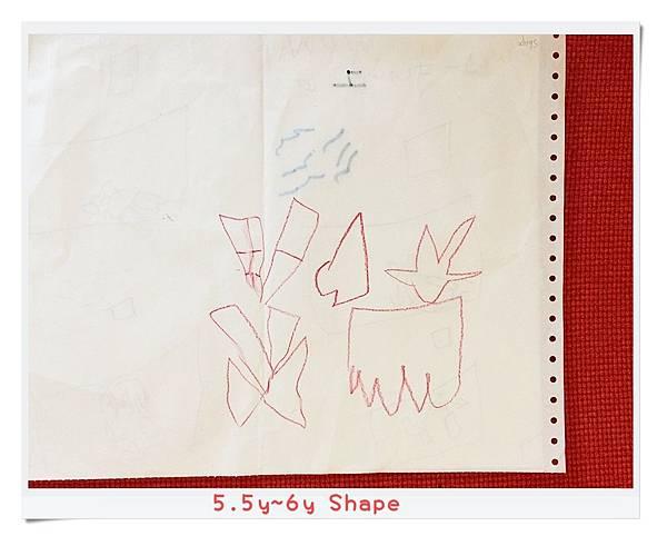 5.5y~6y Shape.JPG