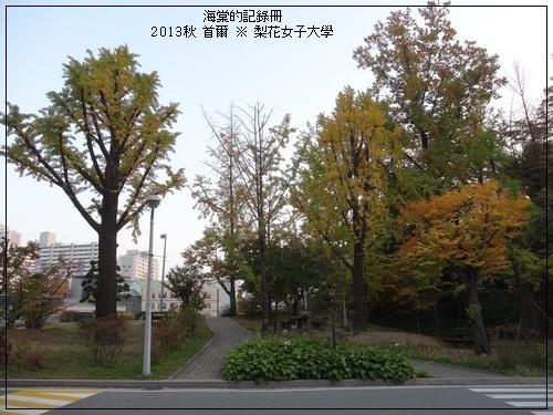 tn_DSC06307.JPG