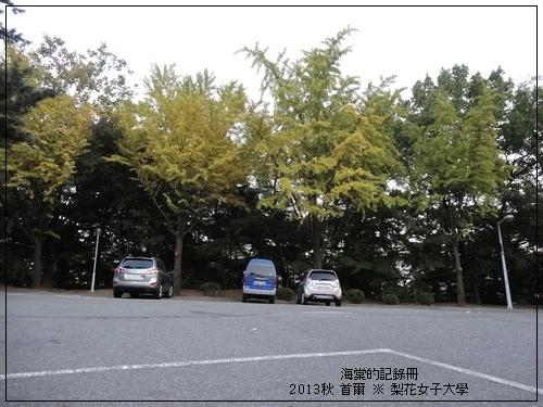 tn_DSC06325.JPG