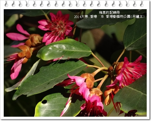 tn_image588.JPG