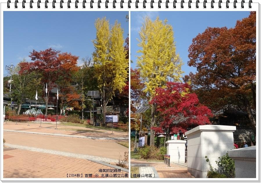 tn_DSC05758-tile.jpg