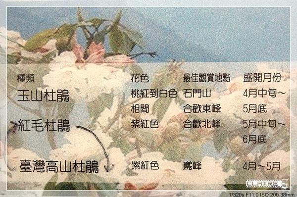 DSC_0587-331-22.jpg