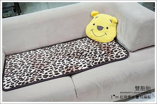 沙發墊-2.jpg