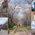 Osaka3-1