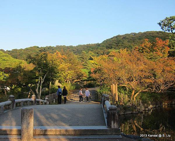 秋楓円山公園