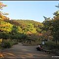 秋楓円山公園-1