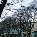 DSCF7370.JPG