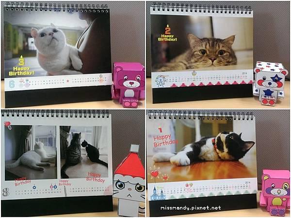 cats2014
