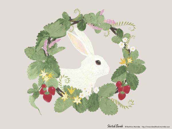 兔子先生.jpg