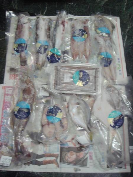 媽媽魚2.JPG