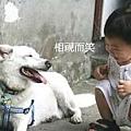 20110620寵物專欄