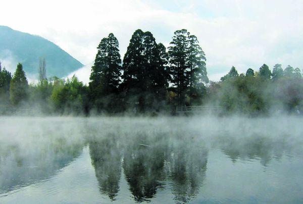 金鱗湖冬.jpg