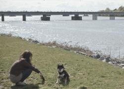 20110512寵物專欄
