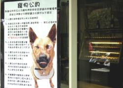 新聞報導的便宜狗餐廳