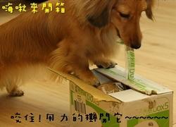 so開箱.jpg