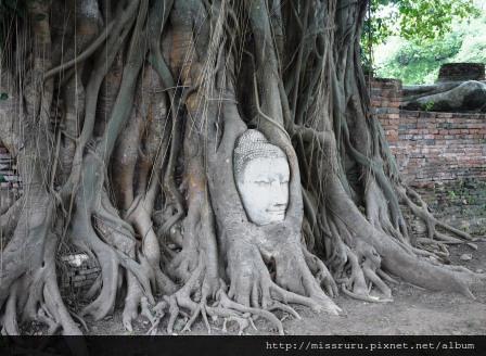 Ayutthaya-傳說中的佛頭