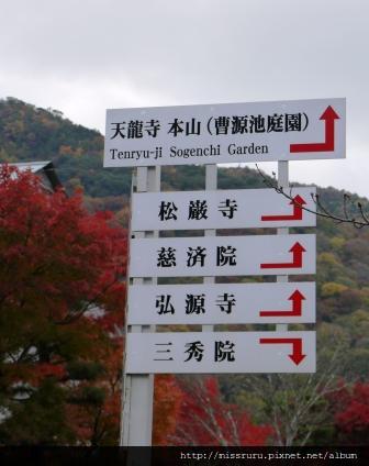 49-嵐山往天龍寺