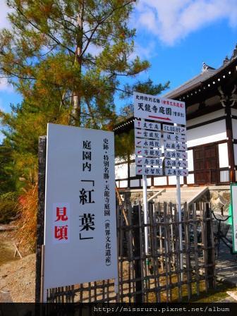 57-嵐山天龍寺