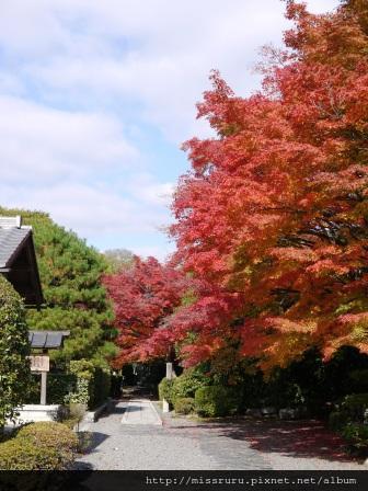 63-嵐山