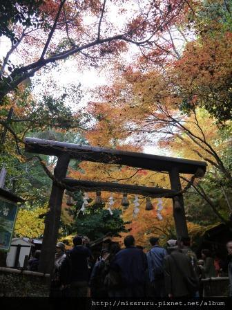 79-野宮神社
