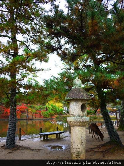 東大寺外石燈籠
