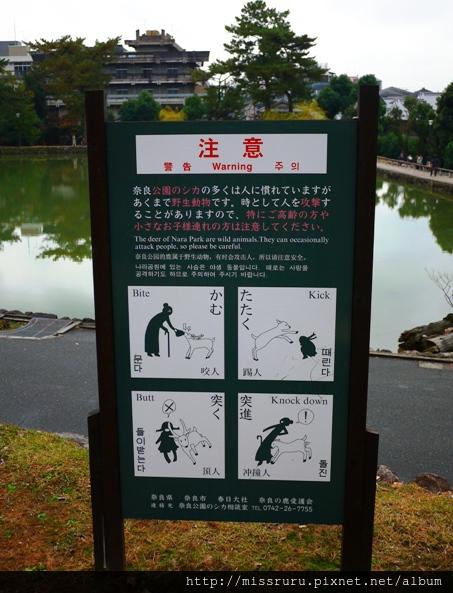 警告-公園的鹿會咬人踢人頂人撞人