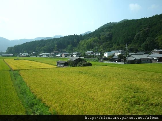 美山5.JPG