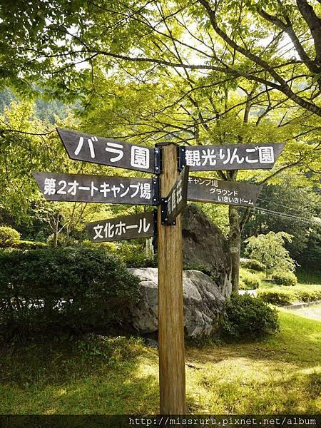 美山14.JPG