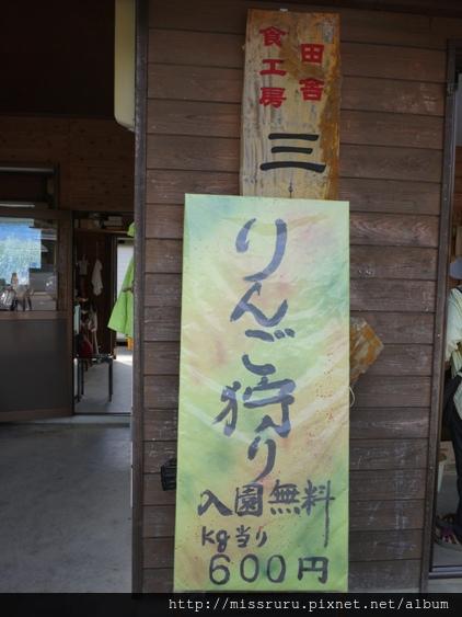 美山21.JPG