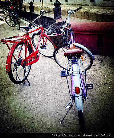 民宿腳踏車.jpg