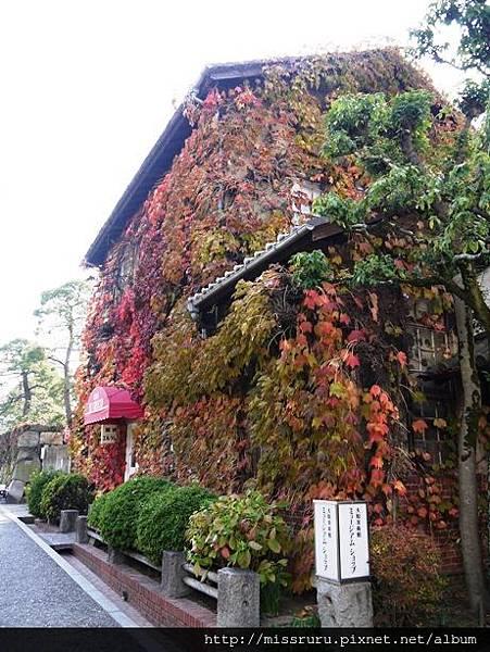 白天的爬滿紅葉咖啡館.JPG