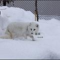 2012旭川動物園