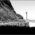 20050730龍洞北海岸028-1