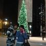 其實我只想跟聖誕樹拍XD