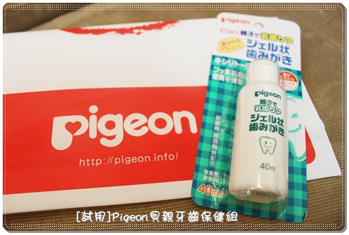Pigeon_02.JPG