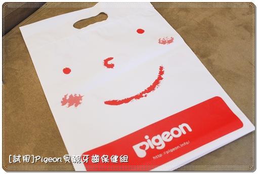 Pigeon_00.JPG
