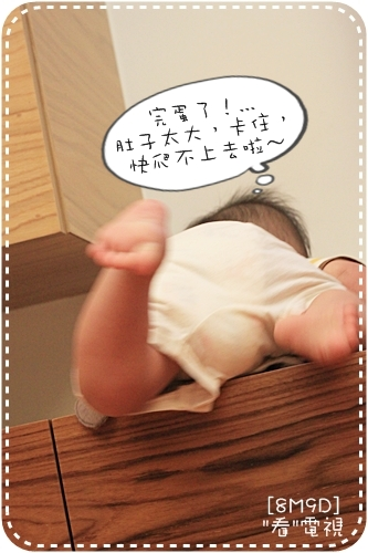 IMG_9026_1.JPG