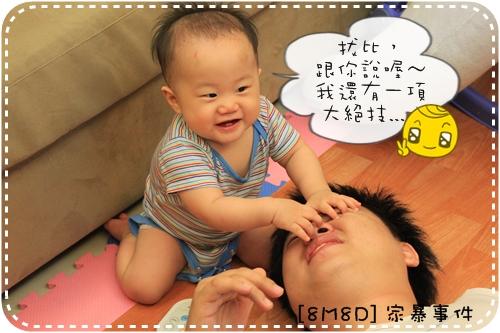 IMG_8988_2.JPG