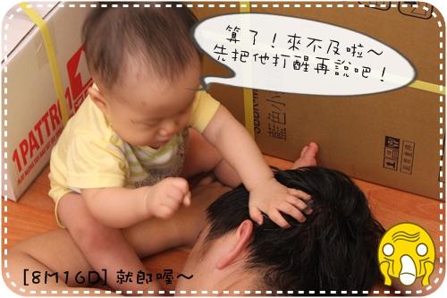 IMG_9378_1.JPG