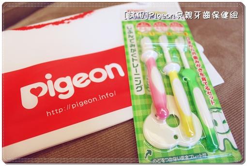 Pigeon_03.JPG