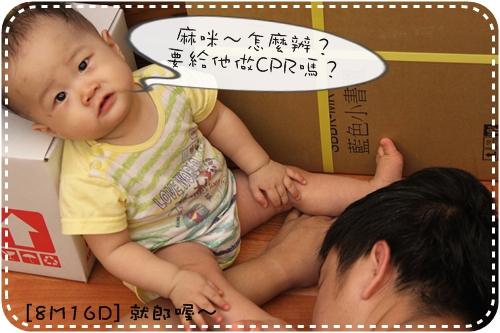 IMG_9377_1.JPG
