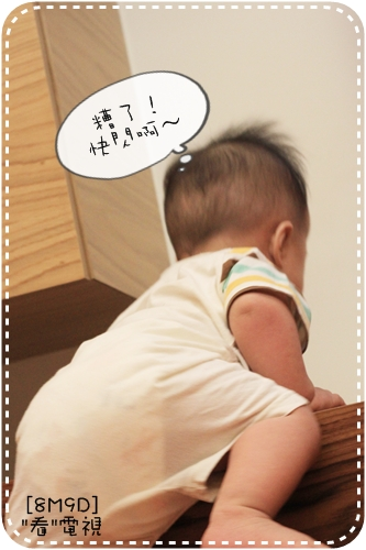 IMG_9025_1.JPG