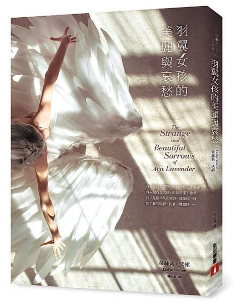 《羽翼女孩的美麗與哀愁》立體書封.jpg