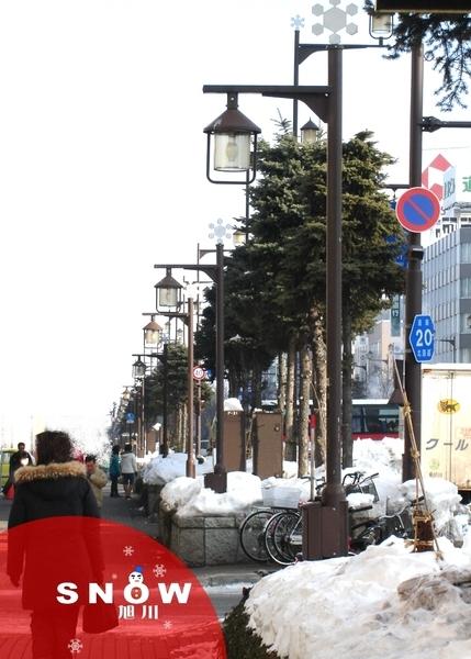 02旭川-旭山zoo01.jpg