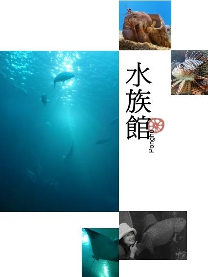 澎湖北環-04岐頭澎湖水族館.jpg